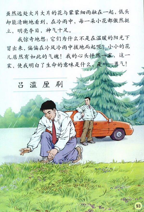 初中语文月教学反思_20* 花的勇气-电子课本(旧版)-四下-人教版-语文资源网