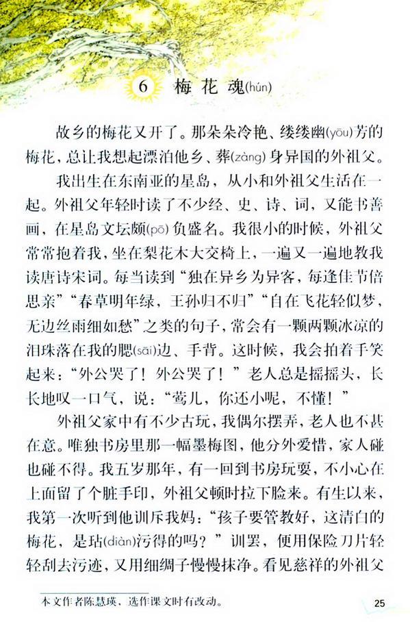 6 梅花魂(第30页)